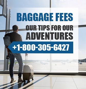 American Airlines Baggage Policy and Fees