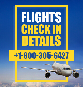 United Airlines Flight Check-in Policy